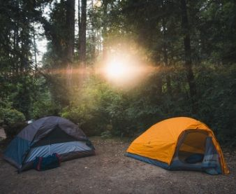 sun-shining-on-camping-tents-in-the-woods
