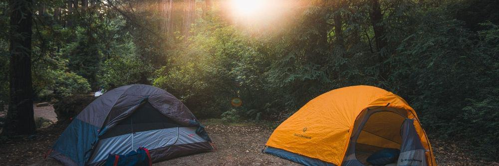 camping-tents-in-the-woods-with-sunshine