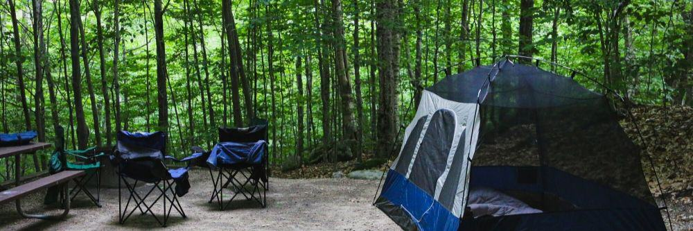 chairs for camping in the woods